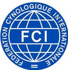 index-FCI